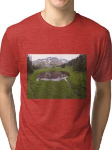 Washington Reflection Tri-blend T-Shirt