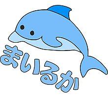 dolphin anime Photographic Print