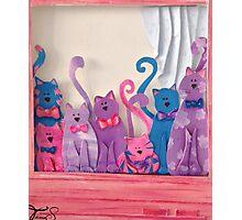M's Window with Kitties Photographic Print