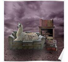 Intelectual Llama Poster