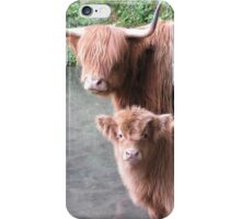 Hairy Coos – Scottish Highland Cattle, Cow & Cute Calf iPhone Case/Skin
