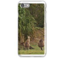 Kangaroos in Tropical Queensland iPhone Case/Skin