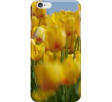 Yellow Field of Tulips iPhone Case/Skin