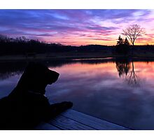 Morning Sentinel Photographic Print