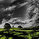 Stormy Skies and Sunny Days by bertie01