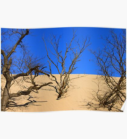 Mt. Baldy Sand Dune Poster