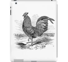 Vintage Rooster Fowl Bird Illustration Retro 1800s Black and White Image iPad Case/Skin