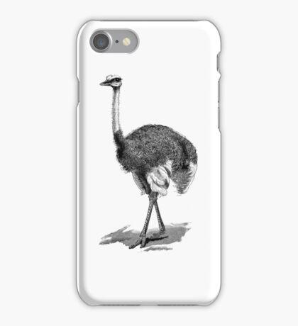 Vintage Ostrich Birds Illustration Retro 1800s Black and White Bird Image iPhone Case/Skin