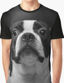 Guilty Boston Terrier Graphic T-Shirt