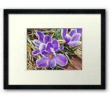 Sign Of Spring Framed Print