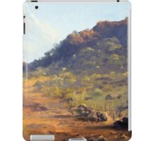 Mutawintji National Park, outback NSW, Australia iPad Case/Skin