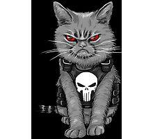 Cat comic Photographic Print