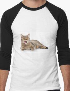 Red funny striped cat British Men's Baseball ¾ T-Shirt