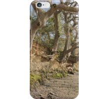 Exposed Roots At Low Tide iPhone Case/Skin