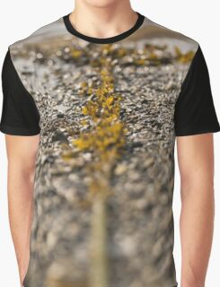 Seaweed And Rope Graphic T-Shirt