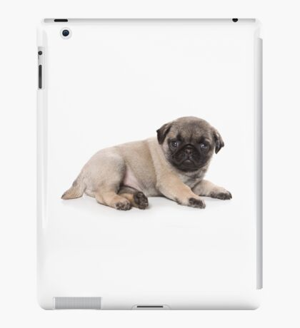 Funny cute pug puppies iPad Case/Skin