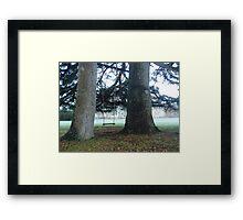 Swing in Devon Framed Print