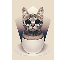 Caffeinimals: Cat Photographic Print
