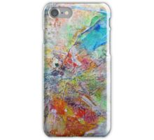 SpringBreezeOrange2016(2) iPhone Case/Skin