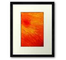 Burning Cage Framed Print