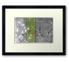 Colour strip Framed Print
