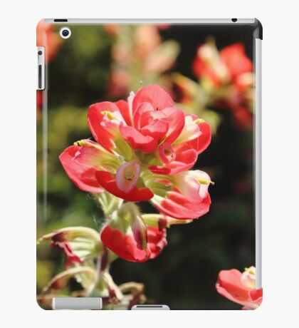The Indian Paint Brush iPad Case/Skin