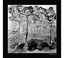 Vineyard in Black and White Photographic Print