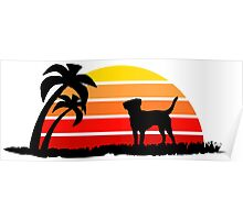 Labrador Retriever on Sunset Beach Poster