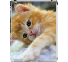 Relaxed kitten iPad Case/Skin