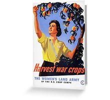 Harvesting War Crops Picking Peaches Greeting Card