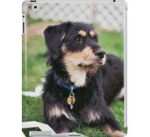 'Dexter Backyard' iPad Case/Skin