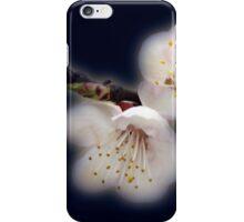 shining in moonlight iPhone Case/Skin
