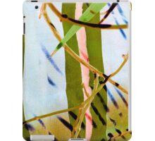 Tao Painting iPad Case/Skin