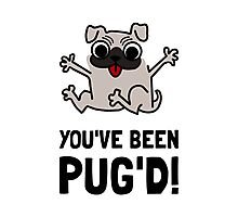 You Have Been Pug Dog Photographic Print