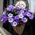 PRETTY FLOWERS  by ✿✿ Bonita ✿✿ ђєℓℓσ