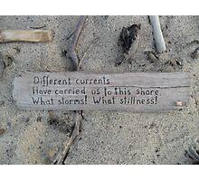 Driftwood haiku Photographic Print
