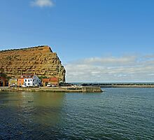 Across Staithes Harbour To Cowbar Nab by Rod Johnson