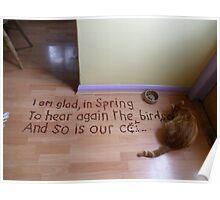 Cat biscuit haiku Poster