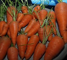 Carrots  by Tom McDonnell