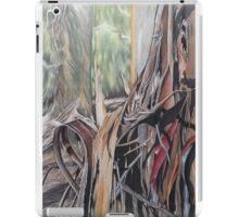 Enduring Stillness iPad Case/Skin