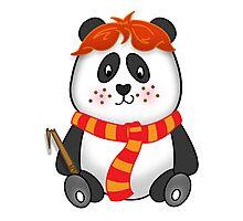 Potter Panda Pals - Ron Photographic Print