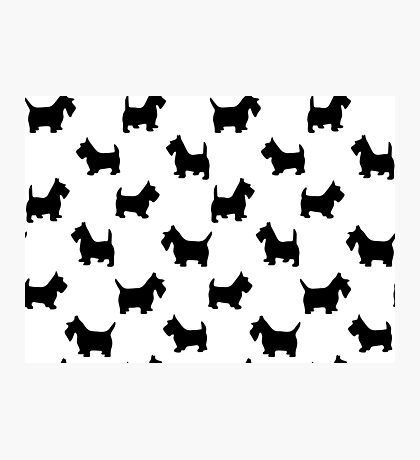 pattern with dogs) Photographic Print