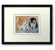 Two Cute Kittens Play With Blue Ribbon - Ronner-Knip Framed Print