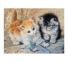 Two Cute Kittens Play With Blue Ribbon - Ronner-Knip Photographic Print