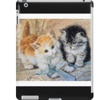 Two Cute Kittens Play With Blue Ribbon - Ronner-Knip iPad Case/Skin