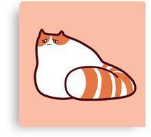 Exotic Shorthair Kitty Canvas Print