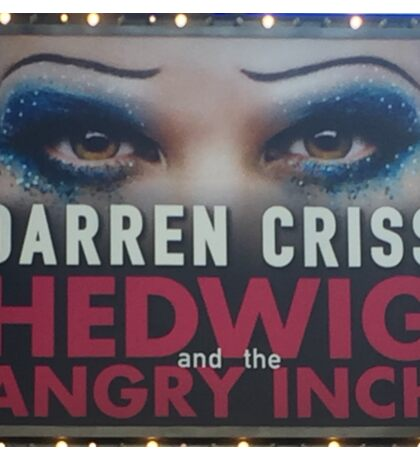 Hedwig-Darren Marquee  Sticker