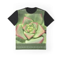 Hens And Chicks Succulent Graphic T-Shirt