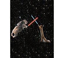 Star Wars the Koala strikes back Photographic Print