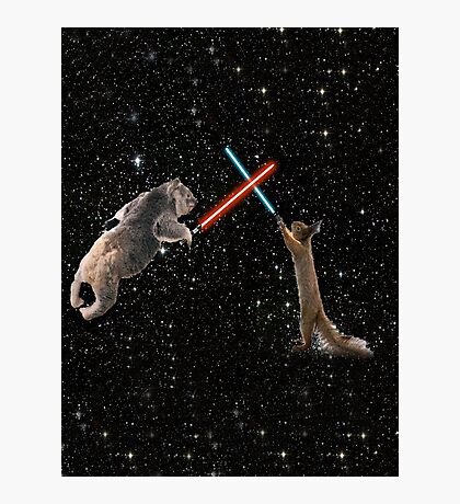 Star Wars the Koala strikes back Photographic Print
